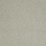 Skippy Antiquity 00320_z6954 Tuftex Carpet