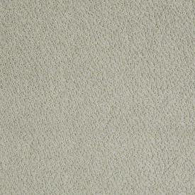 Skippy Antiquity 00320 Z6954 Tuftex Carpet