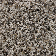 Front Runner (B) - 6110 Coastal - Residential Carpet