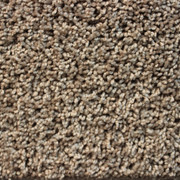 Front Runner (S) - 7107 Doeskin - Residential Carpet