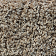 Front Runner (S) - 7205 Sunrise - Residential Carpet