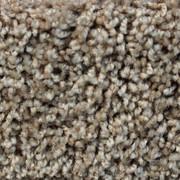 Front Runner (S) - 7205 Sunrise - Residential Carpet