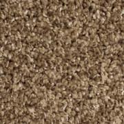 Voluptuous - 0231 Ecru - Residential Carpet