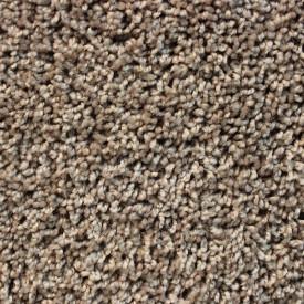 Front Runner Residential Carpet Instock Special