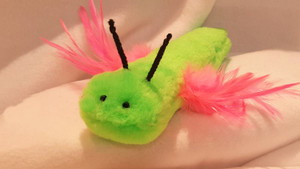 Fun feather winged, catnip filled Dragonfly..