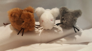 All new eared mice....Meet Grayson, Snow, and Bear mice! Catnip filled, and very mouse like size and appearance. A real MEOW for your pet!