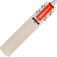 Gray Nicolls Players PP Cricket Bat 2016 - Front Face