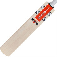 Gray Nicolls Select PP Cricket Bat 2016 - Front Face