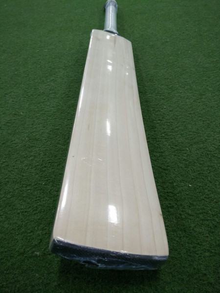 BAS Dolphin Cricket Bat