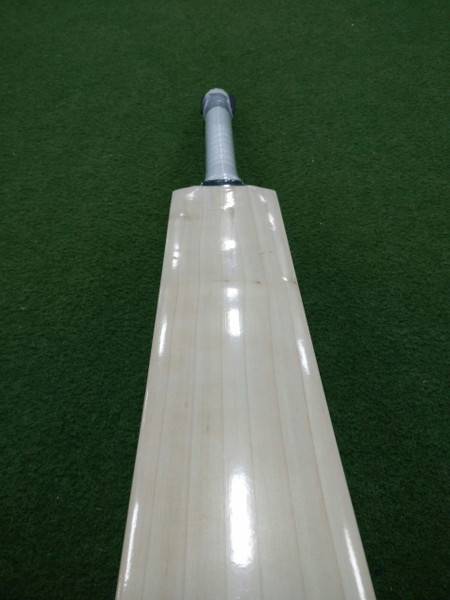 BAS Dolphin Cricket Bat Plain Profile