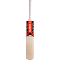 GN Predator 3  5 Star PP Cricket Bat 2017