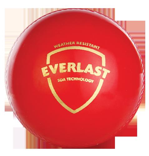 SG Everlast Synthetic Cricket Ball