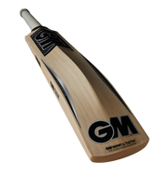 GM Chrome DXM 404 Cricket Bat 2018