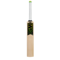 GM Zelos 101 Cricket Bat 2018