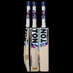 SS TON Silver Edition Cricket Bat 2019