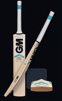 GM SIX6 F4.5 LE Cricket Bat 2015