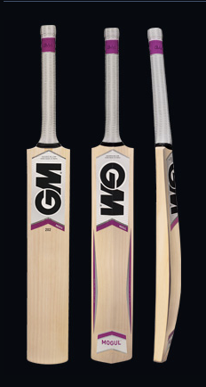 The GM mogul 202 kashmir willow cricket bat
