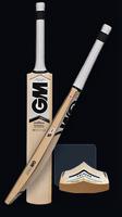 GM ICON F7 DXM 404 Cricket Bat