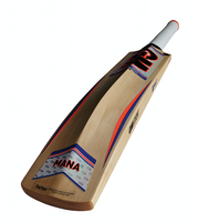 GM mana 2016 cricket bat rear profile
