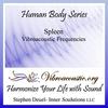 Inner Soulutions VAT Frequencies - Spleen
