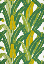 Schumacher Tropical Isle Wallpaper Green On White