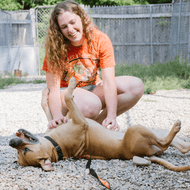 The #MountainTribe Presents: How One Girl Is Helping A Lot of Dogs