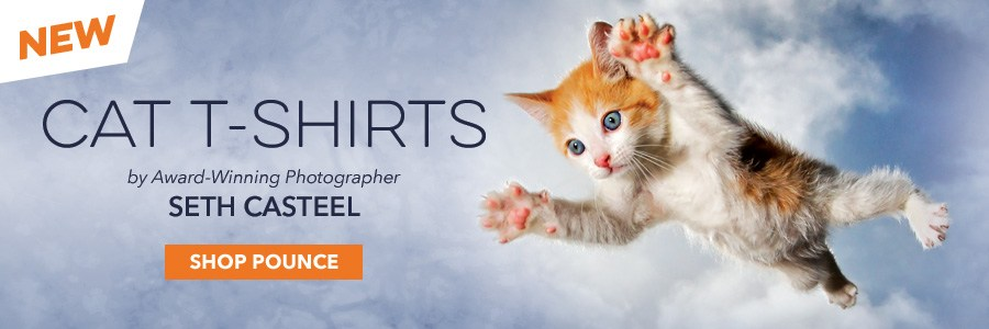 Introducing Seth Casteel's Pounce Cat T-Shirt Collection