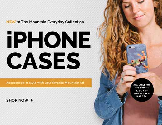 The Mountain - iPhone Cases