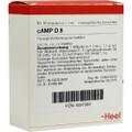 cAMP 8X (D8) Ampullen (Ampoules) 10 x 1.1ml