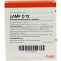 cAMP 12X (D12) Ampullen (Ampoules) 10 x 1.1ml