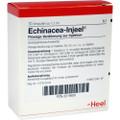Echinacea Injeel Ampullen (Ampoules) 10 x 1.1ml