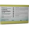 Lachesis Comp N Vet Ampullen (Ampoules) 50 x 1ml
