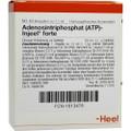 Adenosintriphosphat (ATP) Injeel Forte Ampullen (Ampoules) 10 x 1.1ml