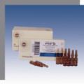 Utilin 6X (D6) Ampullen (Ampoules) 10ea