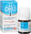 Schuessler Salts Nr 1 Calcium Fluoratum 12X (D12) Globuli 10g