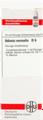 Adonis Vernalis D6