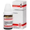 Acidum Phosphoricum C 1000 Globuli 10g