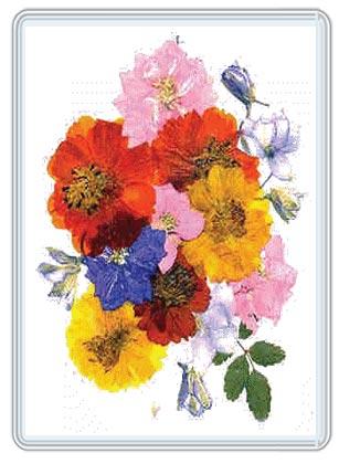 Frame Pressed Flowers