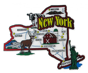 USA map state magnet - NY
