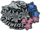 Edelweiss, Alps, Europe souvenir magnet