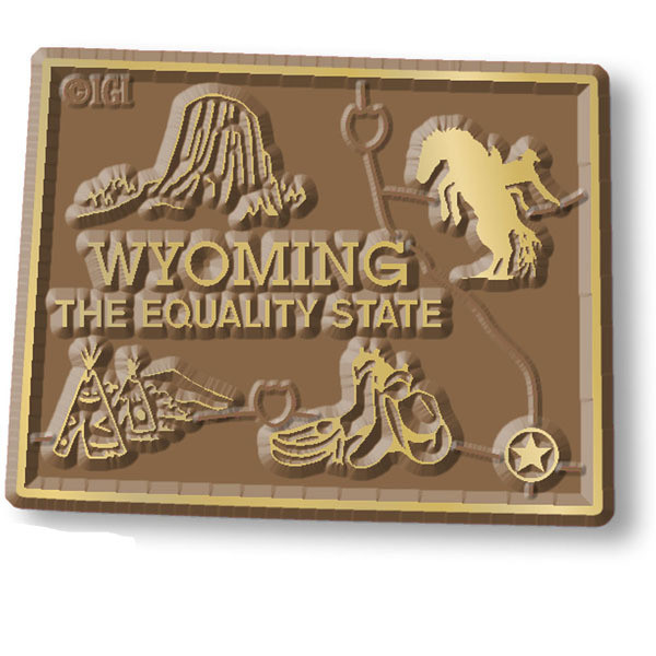 "WY Wyoming Car Magnet 4X6/"" US State Oval Refrigerator Locker SUV Heavy Duty"