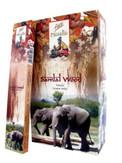 Flute Masala Sandal Wood 12 pack