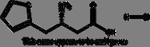 (2-Thienyl)-D-b-homoalanine hydrochloride