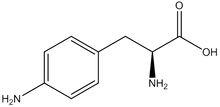 4-Amino-L-phenylalanine