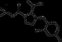 Boc-(R)-g-(2,4-dichlorobenzyl)-L-proline