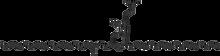 1,2-Dipalmitoyl-rac-glycero-3-phospho-N,N-dimethylethanolamine 100 mg