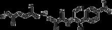 Chloramphenicol succinate sodium 5g