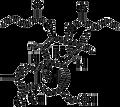 Phorbol 12,13-Dibutyrate 1mg