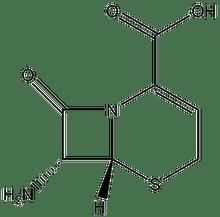 7-Amino-3-nor-3-cephem-4-carboxylic acid 1g