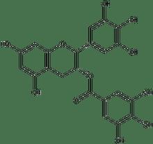 (-)-Epigallocatechin gallate 100mg